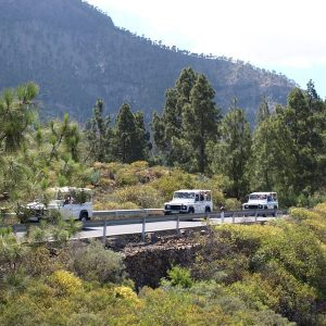 Jeep Safari & Van Tours